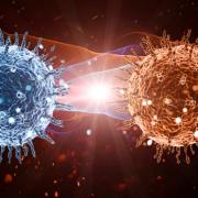 Coronavirüs İnternete Sıçradı!
