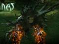fragtist-runes-the-forgotten-path